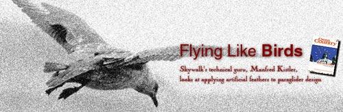 flying-like-birds-header.jpg