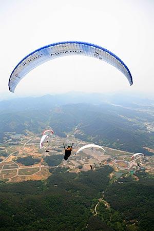 Advance in Korea 2008