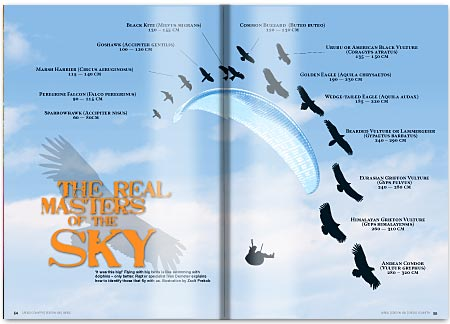 The Real Masters of the Sky