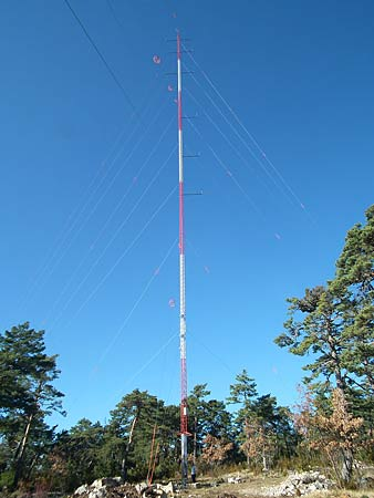 Ulric Jessop, dwarfed by EDF's anenometer mast, which is half the height of the proposed windmills