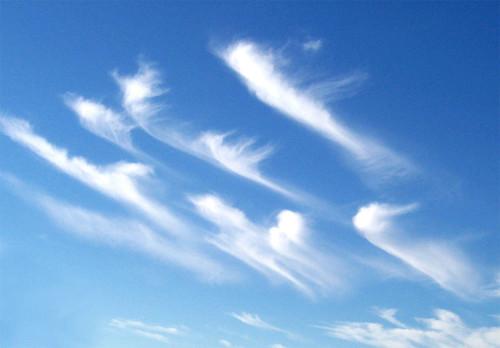 Wind Layers