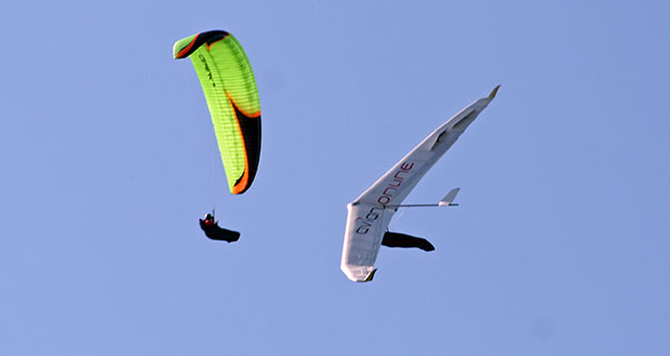 Luke Nicol, hang glider pilot