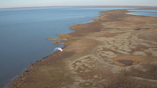 Sacha Dench over the Arctic tundra. Photo: WWT
