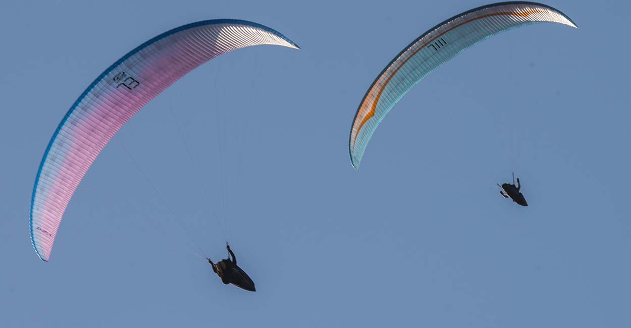 Competition paragliders. Photo: Nicole Holmes