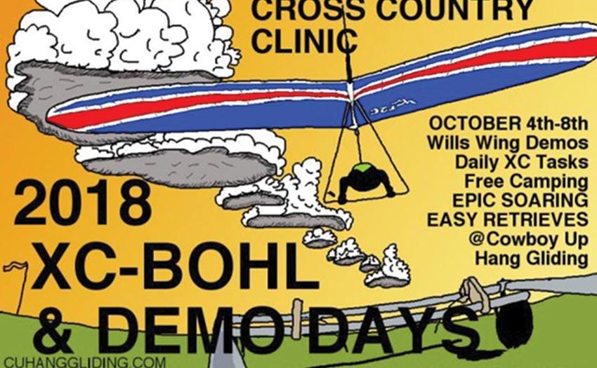 Wills Wing demo days