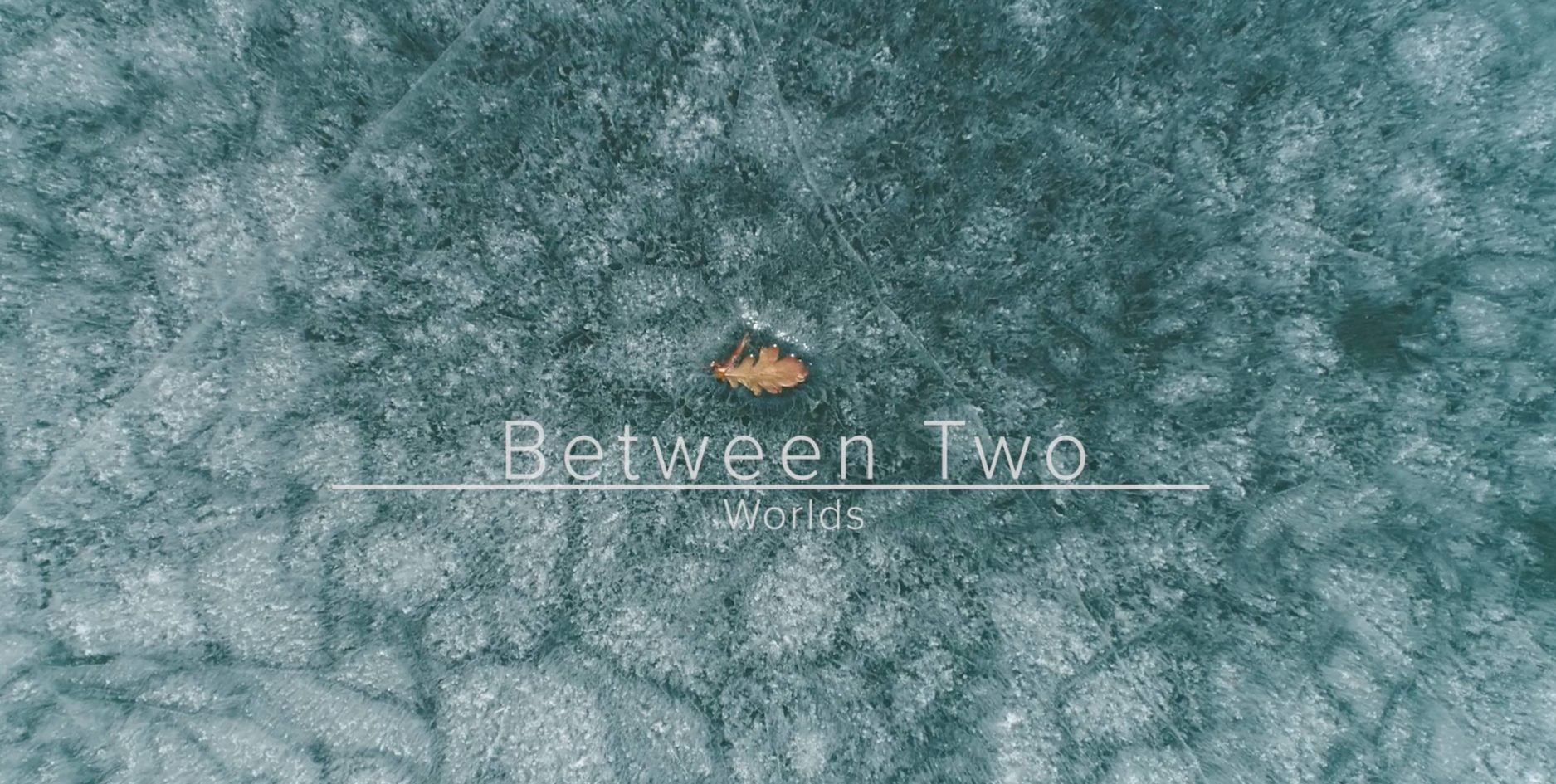 Between Two Worlds